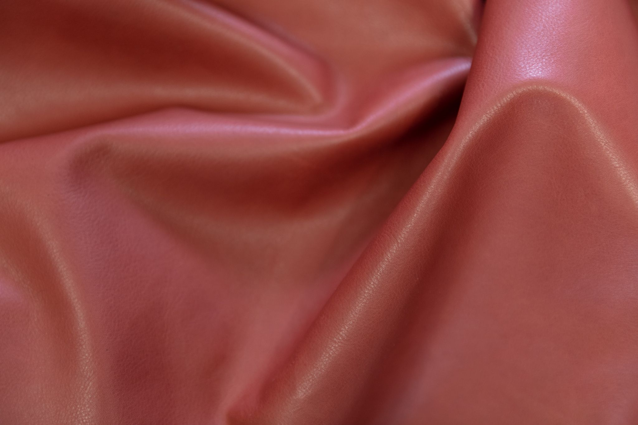 dettaglio pelle materia