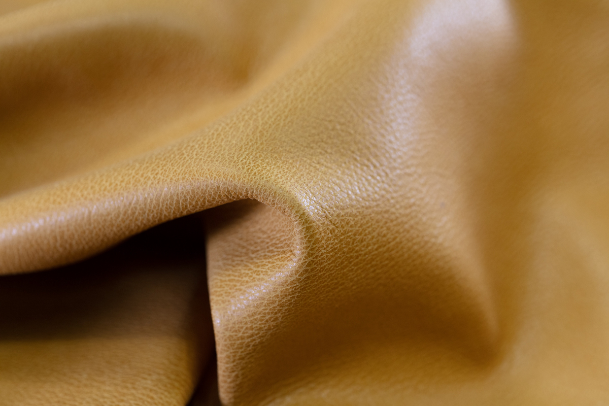 texture pelle